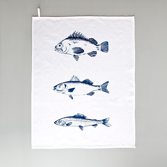blaue Fische